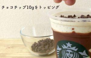 チョコチップ10g